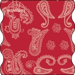 Twister Adult paisley flaming